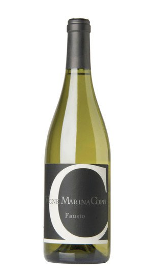 timorasso fausto vigne marina coppi 2017 30244
